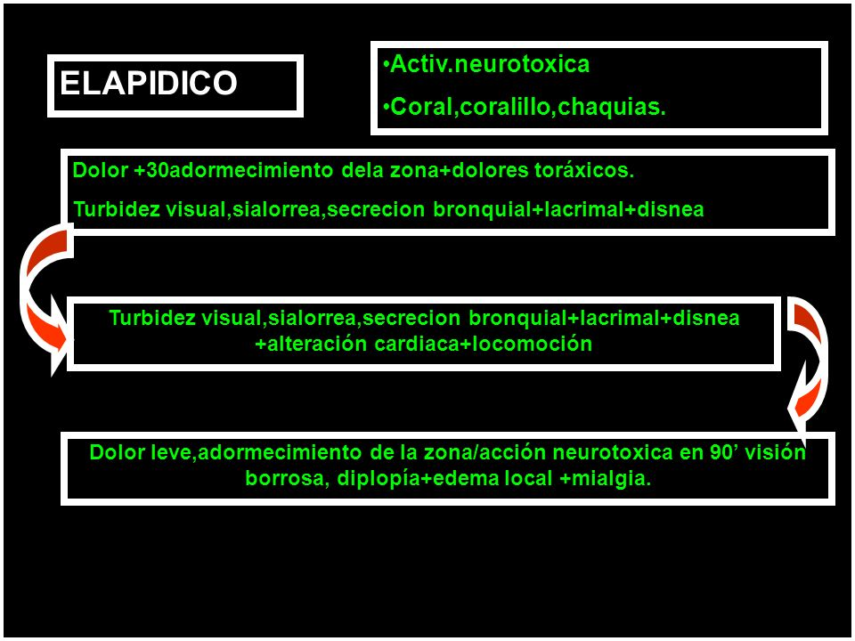 ELAPIDICO Activ.neurotoxica Coral,coralillo,chaquias.