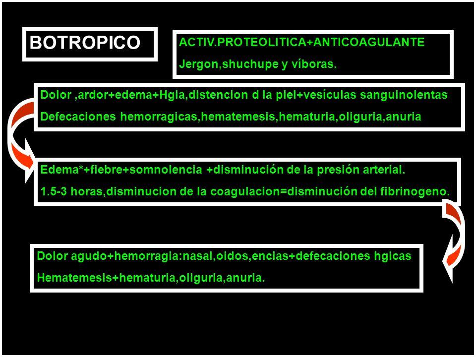 BOTROPICO ACTIV.PROTEOLITICA+ANTICOAGULANTE Jergon,shuchupe y víboras.