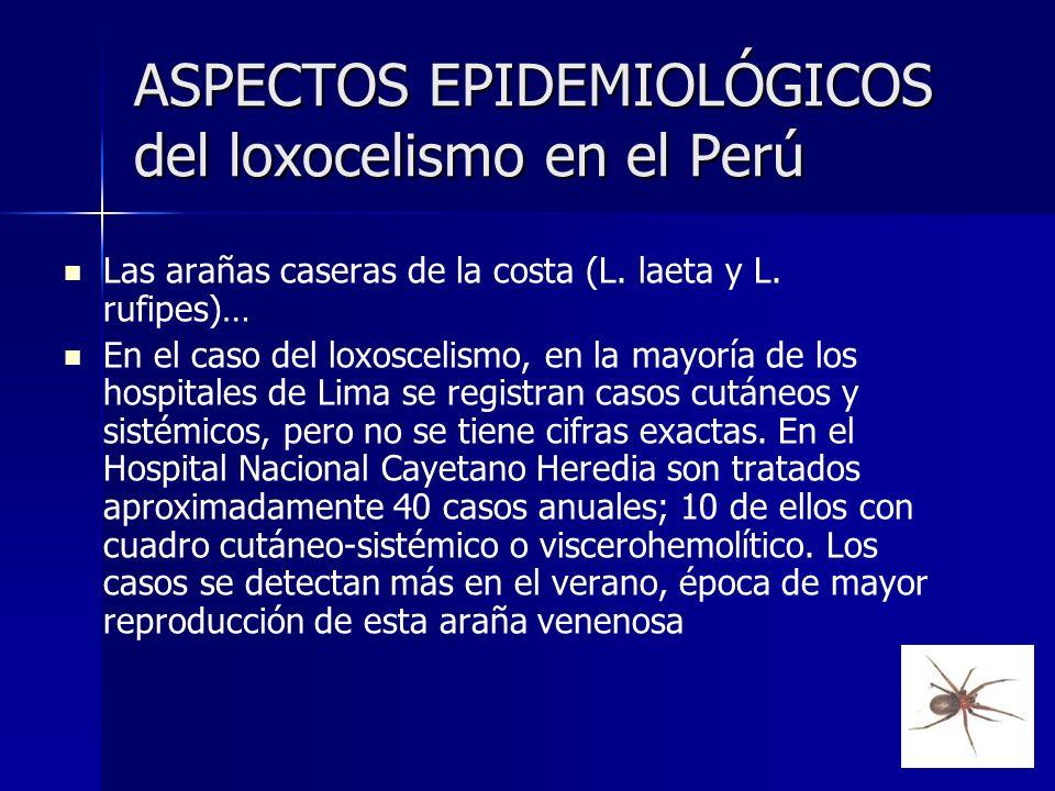 ASPECTOS EPIDEMIOLÓGICOS del loxocelismo en el Perú