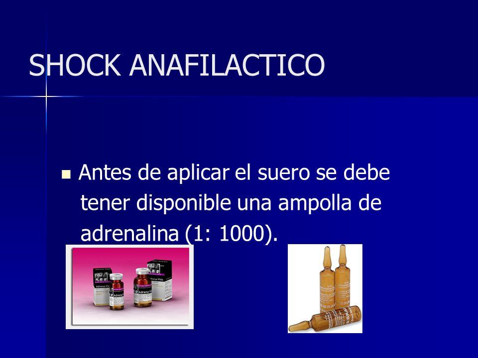 SHOCK ANAFILACTICO Antes de aplicar el suero se debe