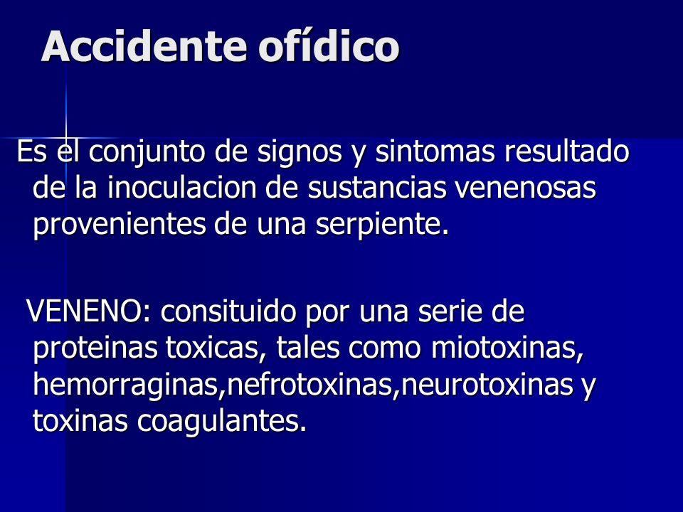 Accidente ofídico Es el conjunto de signos y sintomas resultado de la inoculacion de sustancias venenosas provenientes de una serpiente.