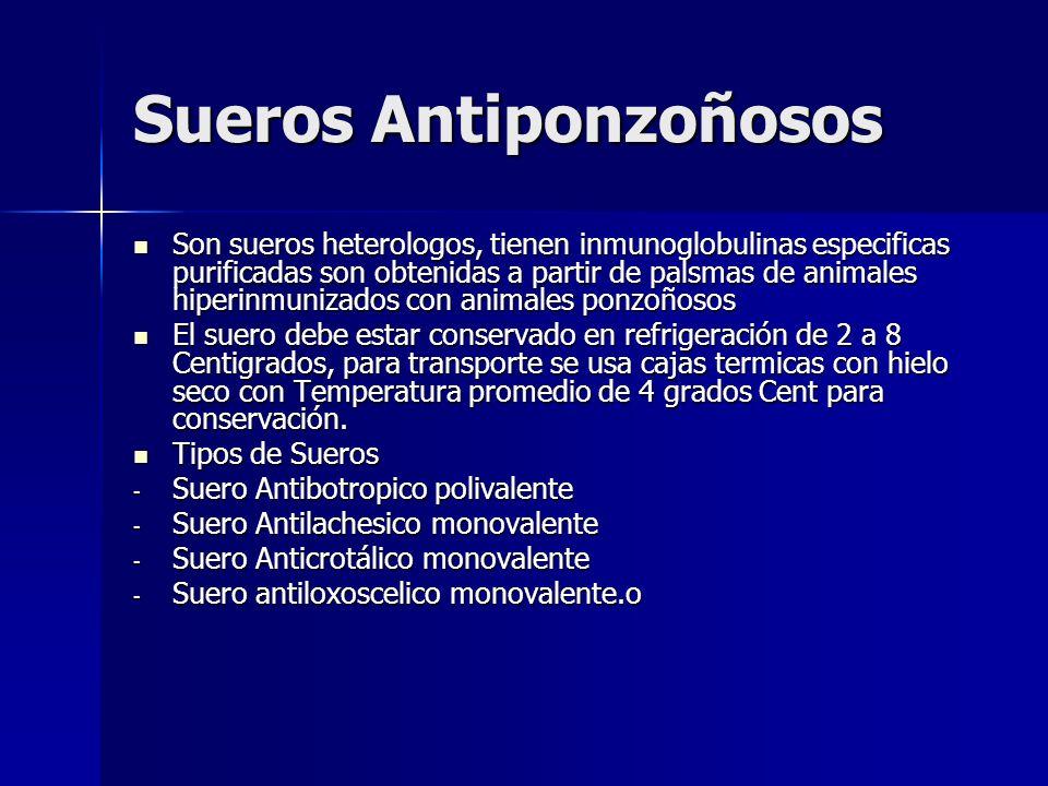 Sueros Antiponzoñosos