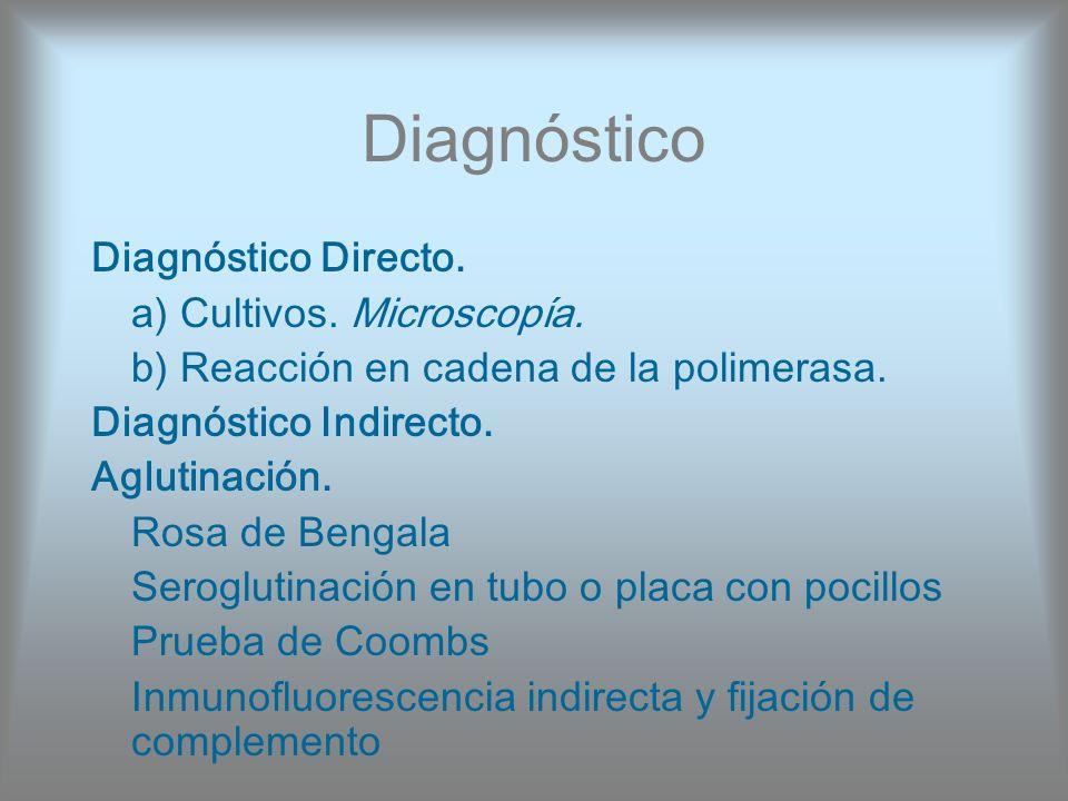 Diagnóstico Diagnóstico Directo. a) Cultivos. Microscopía.
