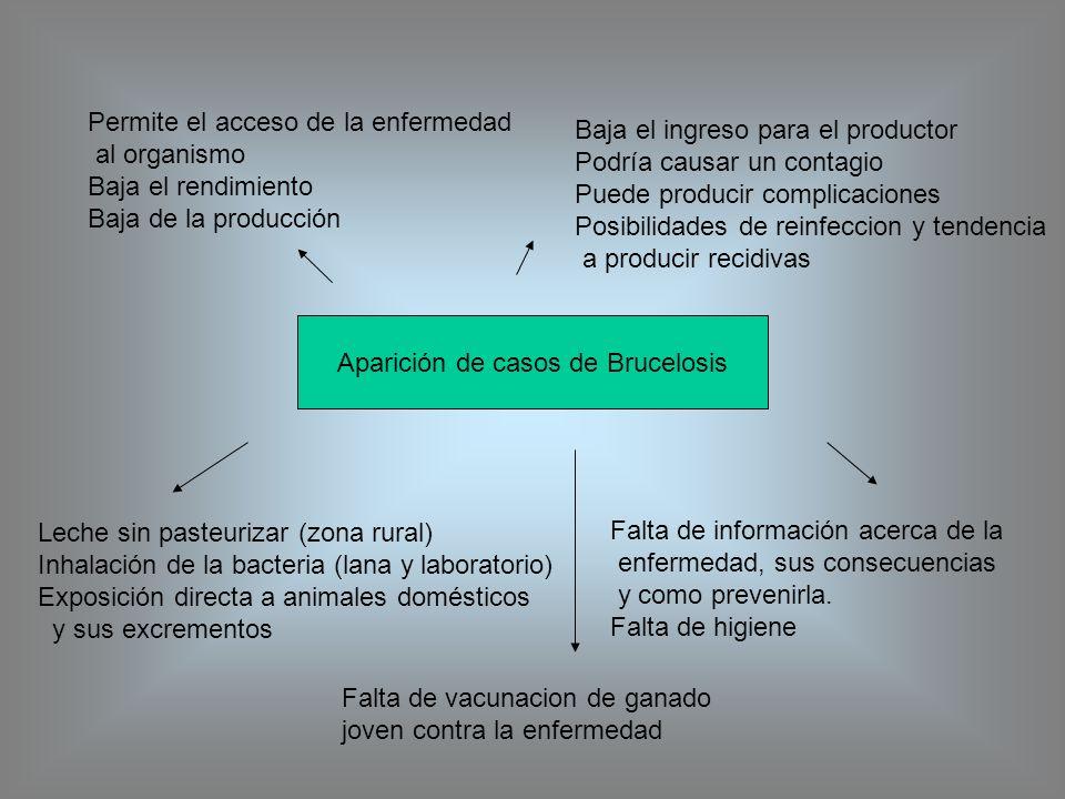 Aparición de casos de Brucelosis