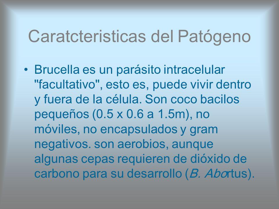 Caratcteristicas del Patógeno