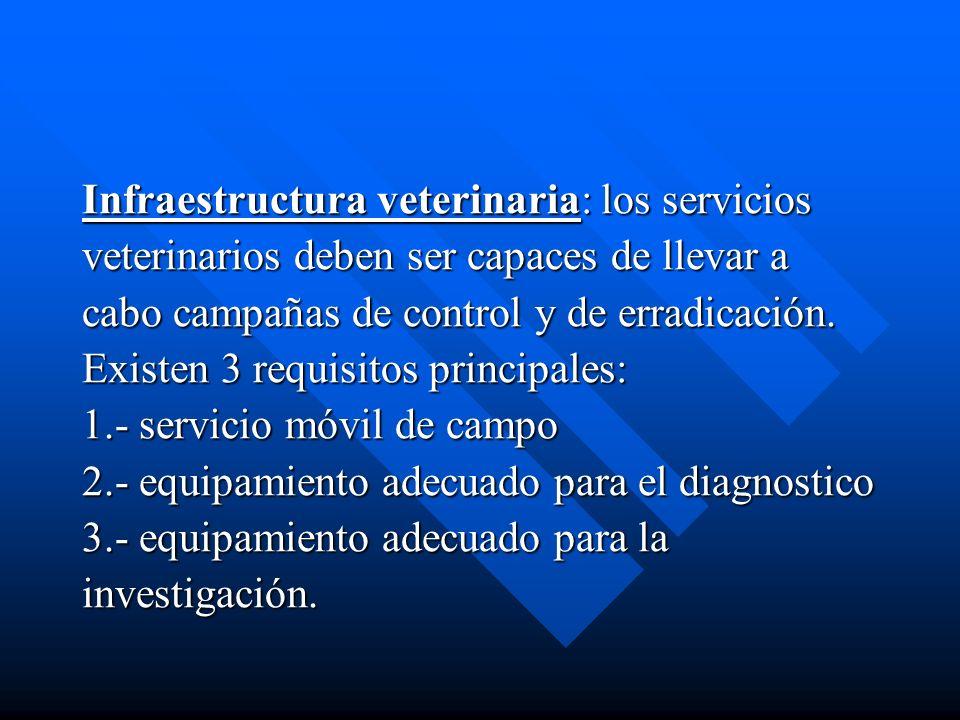 Infraestructura veterinaria: los servicios