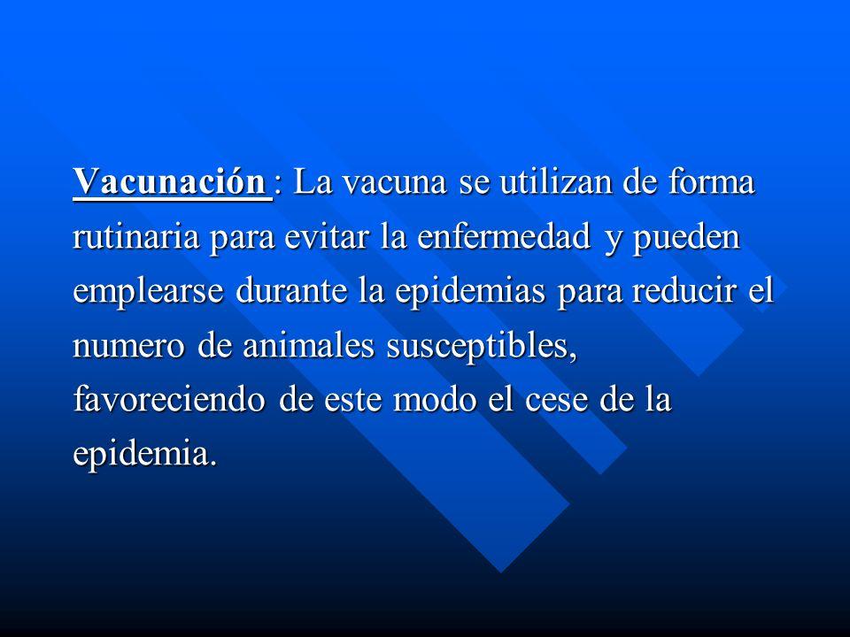 Vacunación : La vacuna se utilizan de forma