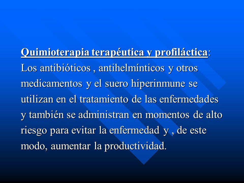 Quimioterapia terapéutica y profiláctica: