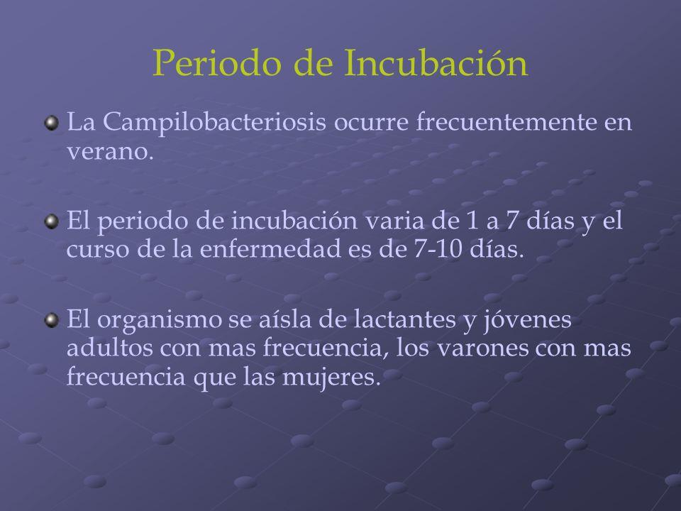 Periodo de Incubación La Campilobacteriosis ocurre frecuentemente en verano.