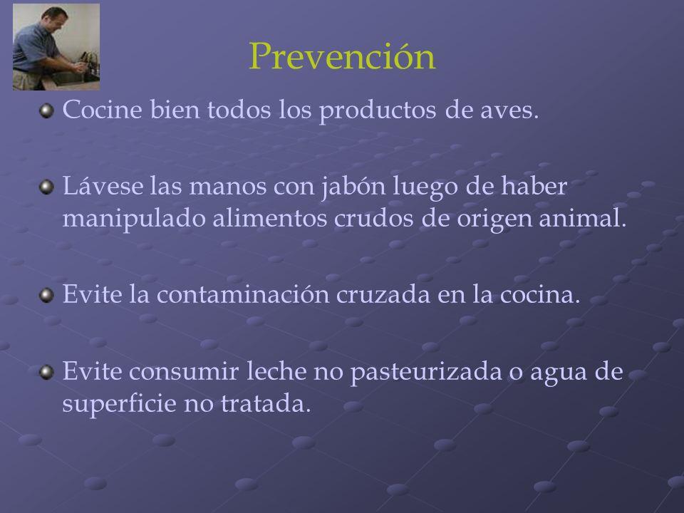 Prevención Cocine bien todos los productos de aves.