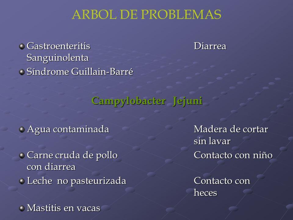 ARBOL DE PROBLEMAS Campylobacter Jejuni