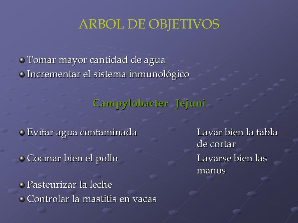 ARBOL DE OBJETIVOS Campylobacter Jejuni Tomar mayor cantidad de agua