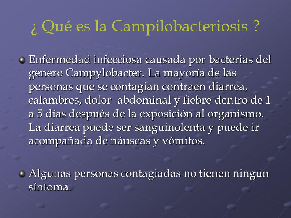 ¿ Qué es la Campilobacteriosis