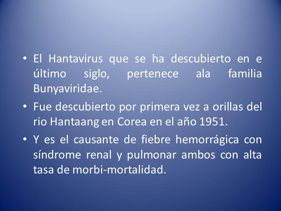 El Hantavirus que se ha descubierto en e último siglo, pertenece ala familia Bunyaviridae.