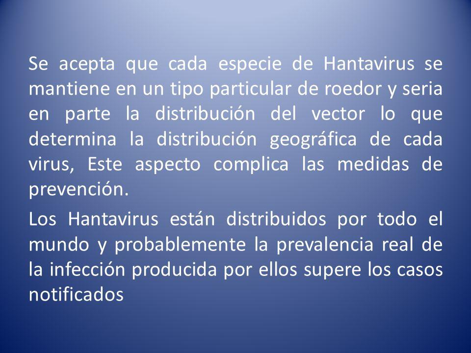 Se acepta que cada especie de Hantavirus se mantiene en un tipo particular de roedor y seria en parte la distribución del vector lo que determina la distribución geográfica de cada virus, Este aspecto complica las medidas de prevención.