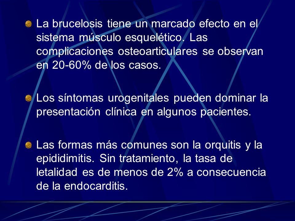 La brucelosis tiene un marcado efecto en el sistema músculo esquelético. Las complicaciones osteoarticulares se observan en 20-60% de los casos.