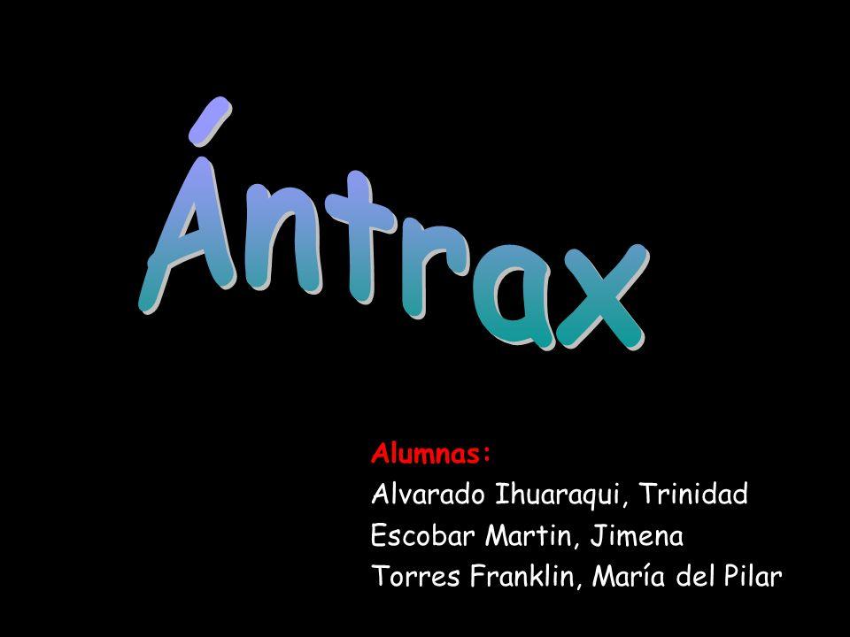 Ántrax Alumnas: Alvarado Ihuaraqui, Trinidad Escobar Martin, Jimena