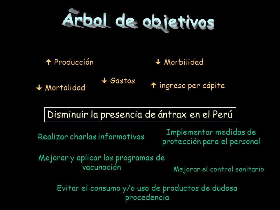 Árbol de objetivos Disminuir la presencia de ántrax en el Perú