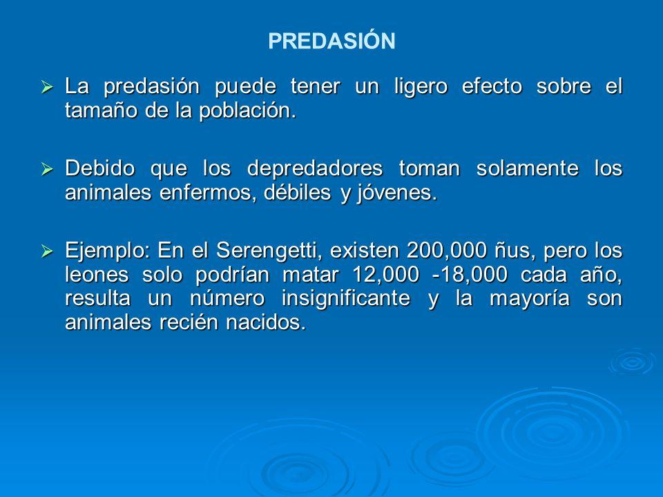 PREDASIÓN La predasión puede tener un ligero efecto sobre el tamaño de la población.