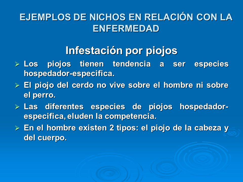 EJEMPLOS DE NICHOS EN RELACIÓN CON LA ENFERMEDAD
