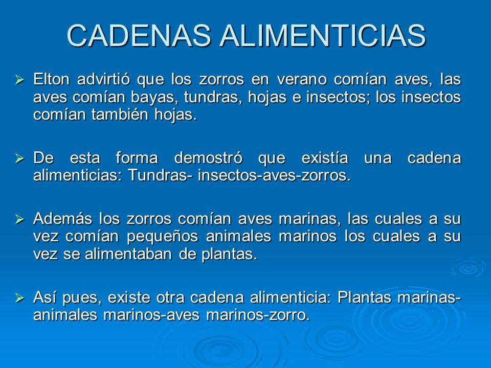 CADENAS ALIMENTICIAS