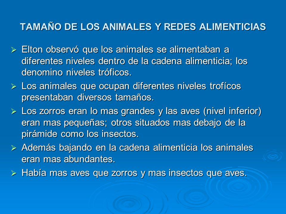 TAMAÑO DE LOS ANIMALES Y REDES ALIMENTICIAS