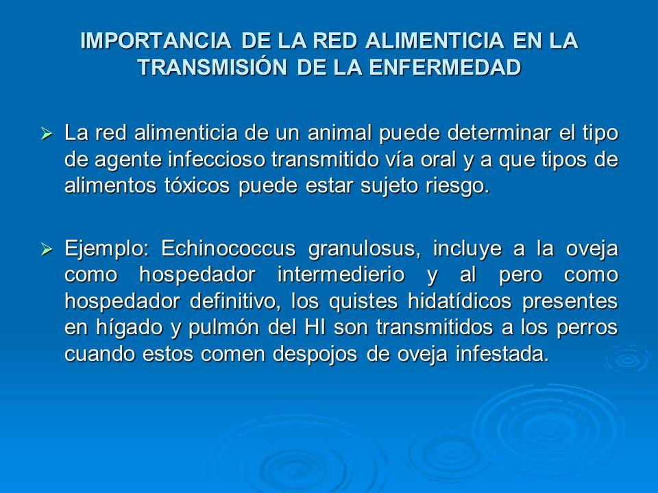 IMPORTANCIA DE LA RED ALIMENTICIA EN LA TRANSMISIÓN DE LA ENFERMEDAD