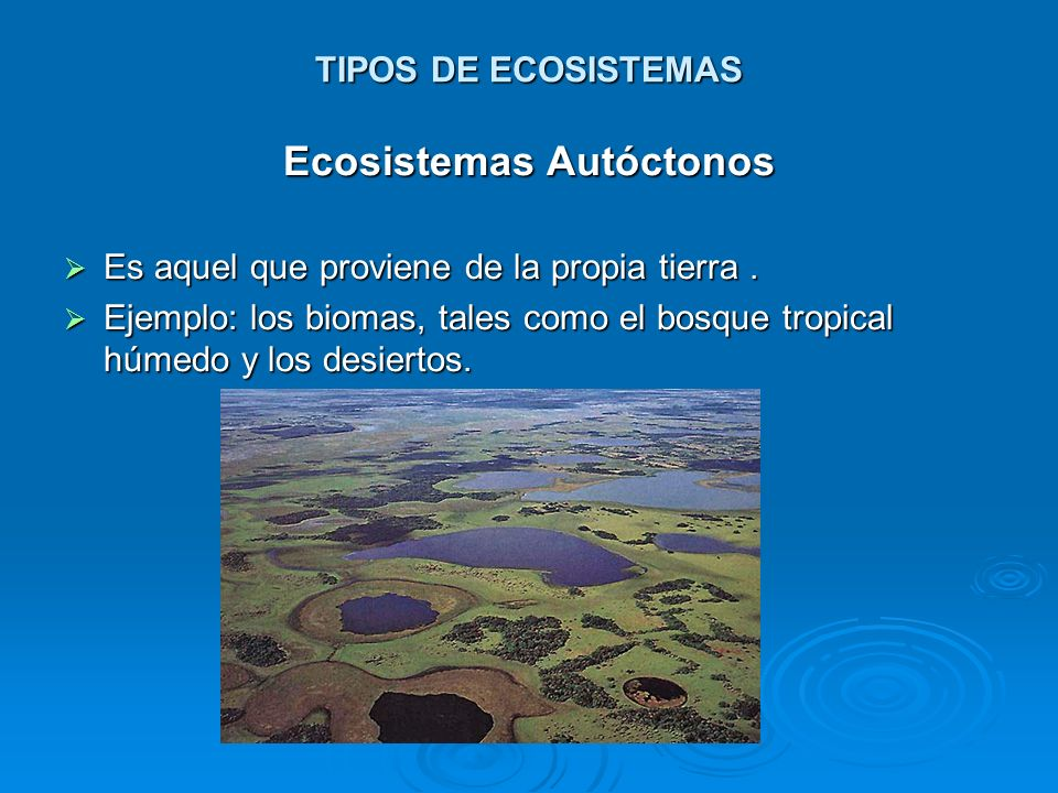 Ecosistemas Autóctonos