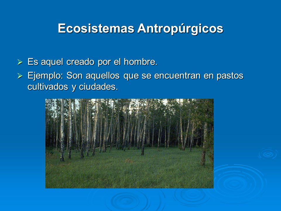 Ecosistemas Antropúrgicos