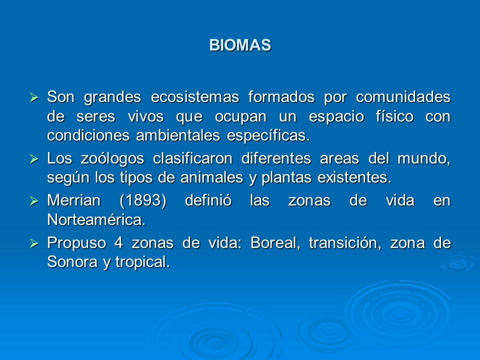 BIOMAS Son grandes ecosistemas formados por comunidades de seres vivos que ocupan un espacio físico con condiciones ambientales específicas.