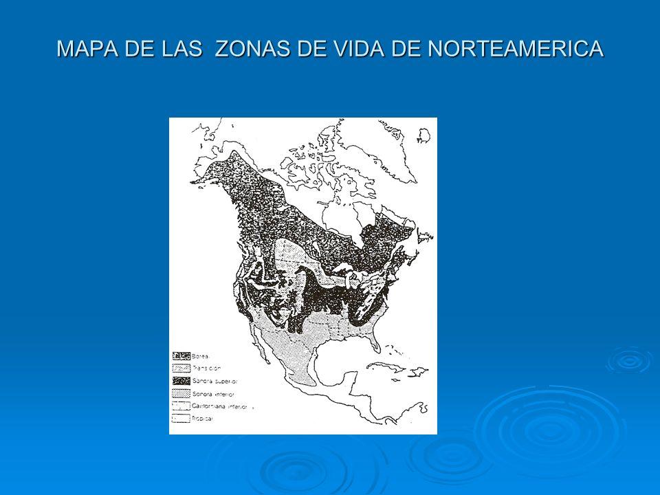 MAPA DE LAS ZONAS DE VIDA DE NORTEAMERICA