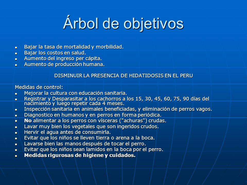 DISMINUIR LA PRESENCIA DE HIDATIDOSIS EN EL PERU