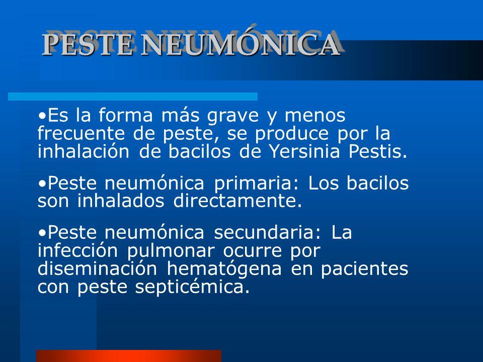 PESTE NEUMÓNICAEs la forma más grave y menos frecuente de peste, se produce por la inhalación de bacilos de Yersinia Pestis.