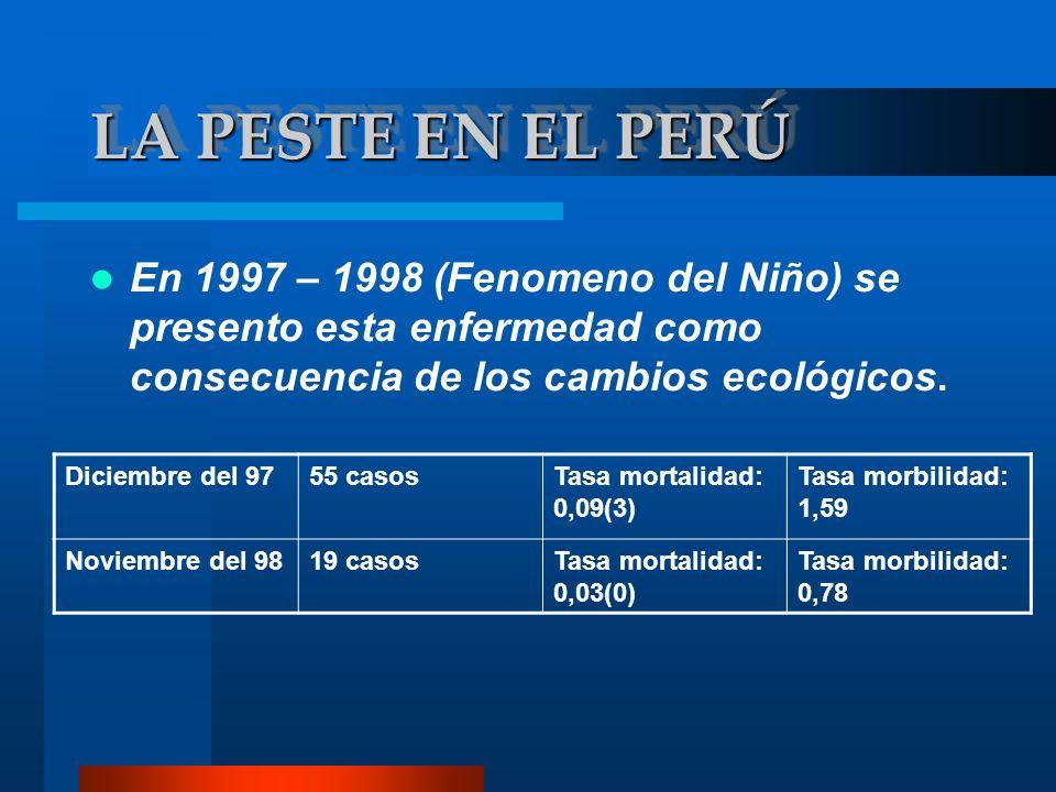 LA PESTE EN EL PERÚEn 1997 – 1998 (Fenomeno del Niño) se presento esta enfermedad como consecuencia de los cambios ecológicos.