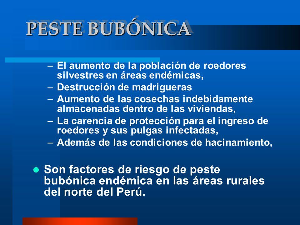 PESTE BUBÓNICA El aumento de la población de roedores silvestres en áreas endémicas, Destrucción de madrigueras.