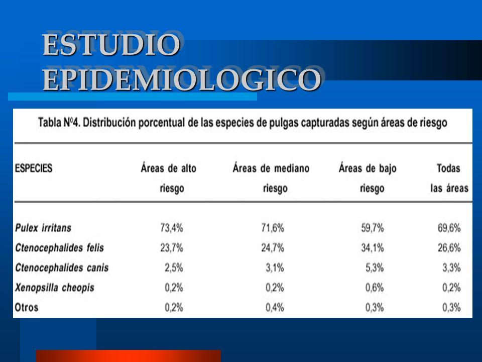 ESTUDIO EPIDEMIOLOGICO
