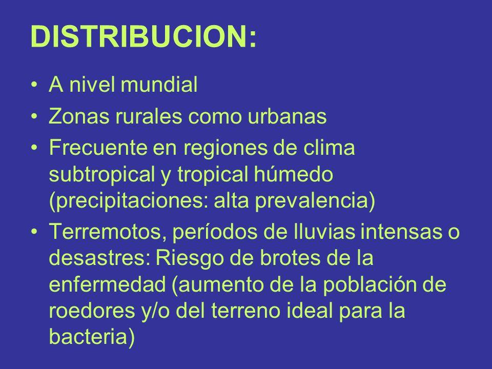 DISTRIBUCION: A nivel mundial Zonas rurales como urbanas