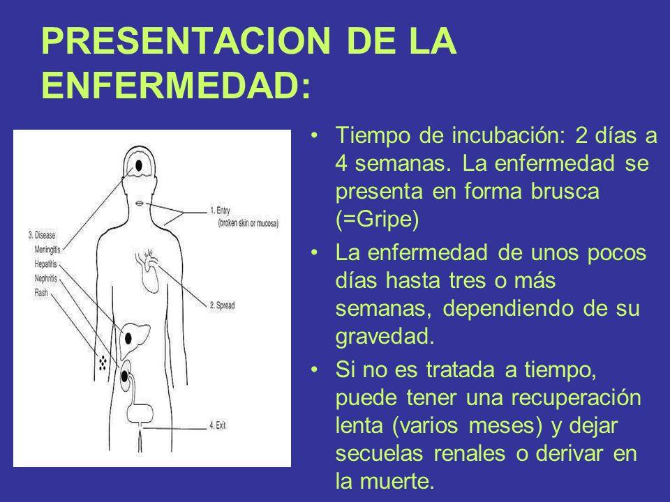 PRESENTACION DE LA ENFERMEDAD: