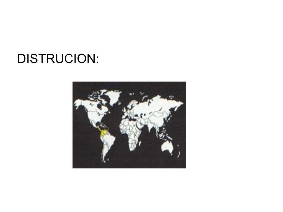 DISTRUCION: