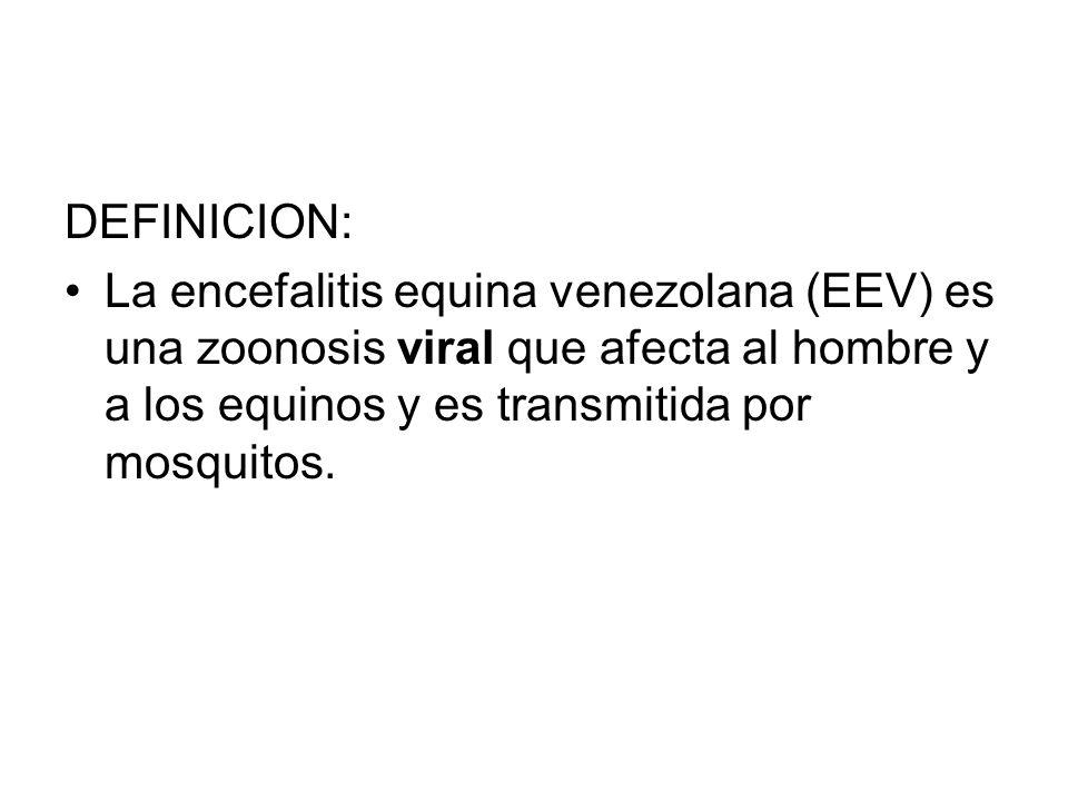 DEFINICION: La encefalitis equina venezolana (EEV) es una zoonosis viral que afecta al hombre y a los equinos y es transmitida por mosquitos.