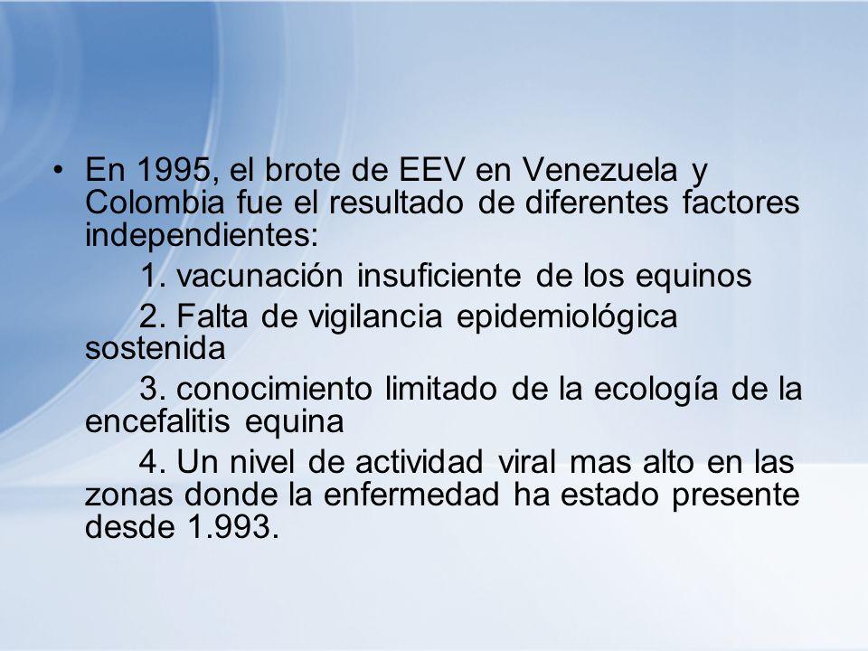 En 1995, el brote de EEV en Venezuela y Colombia fue el resultado de diferentes factores independientes: