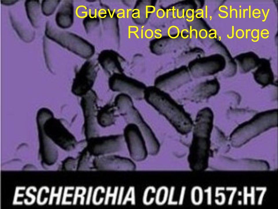 Guevara Portugal, Shirley Ríos Ochoa, Jorge