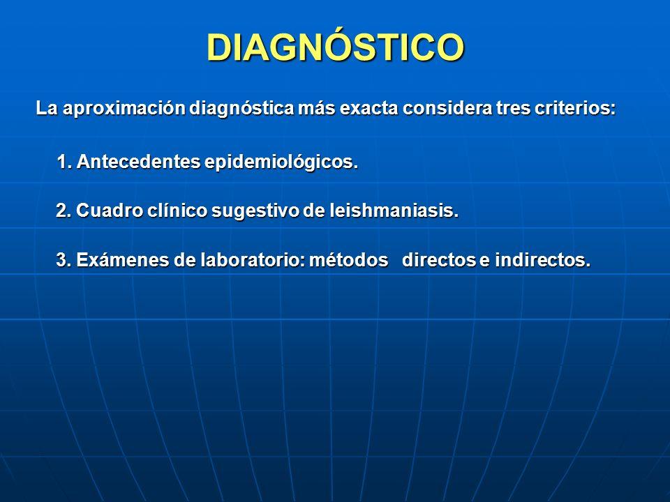 DIAGNÓSTICO La aproximación diagnóstica más exacta considera tres criterios: 1. Antecedentes epidemiológicos.