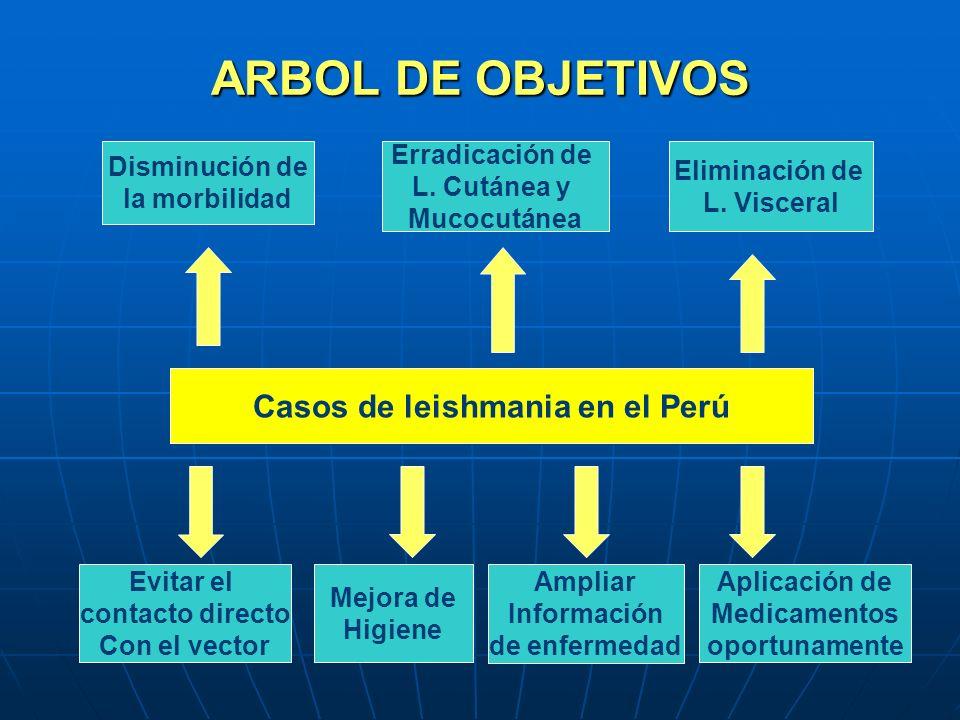 Casos de leishmania en el Perú