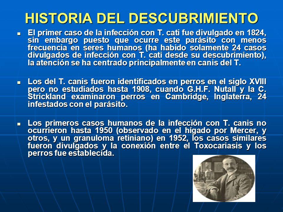 HISTORIA DEL DESCUBRIMIENTO