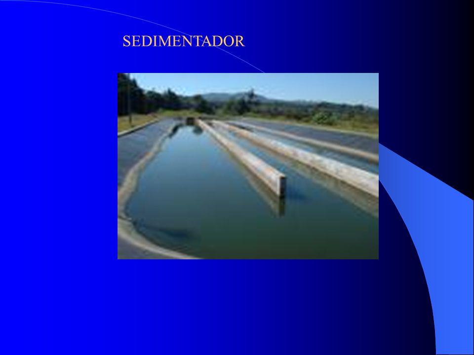 SEDIMENTADOR