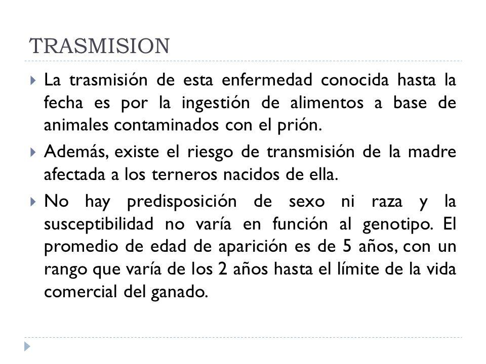 TRASMISION La trasmisión de esta enfermedad conocida hasta la fecha es por la ingestión de alimentos a base de animales contaminados con el prión.