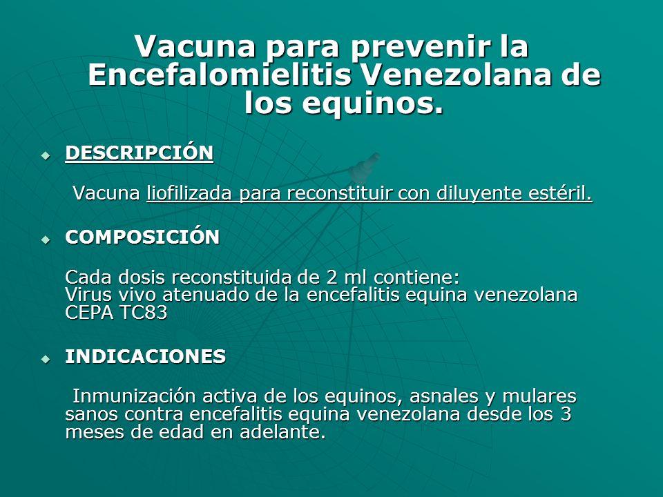 Vacuna para prevenir la Encefalomielitis Venezolana de los equinos.