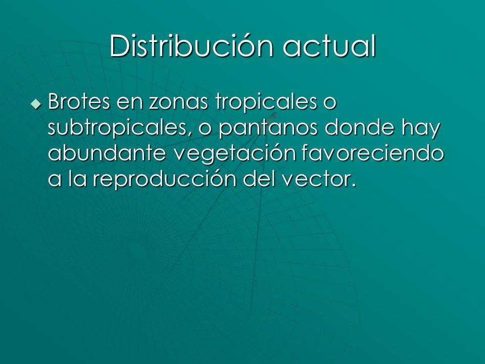 Distribución actualBrotes en zonas tropicales o subtropicales, o pantanos donde hay abundante vegetación favoreciendo a la reproducción del vector.