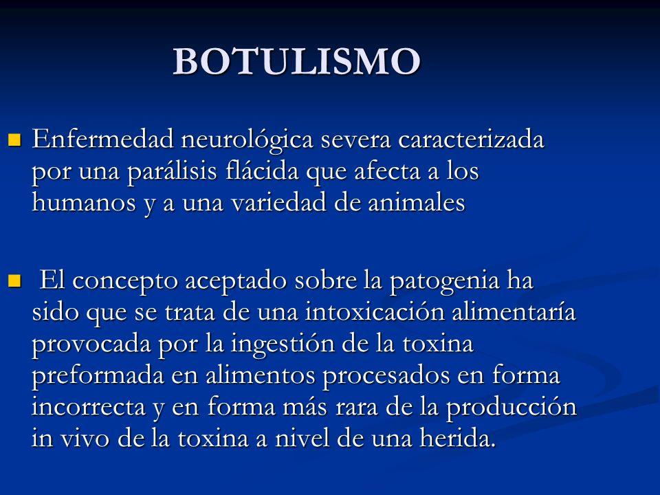 BOTULISMO Enfermedad neurológica severa caracterizada por una parálisis flácida que afecta a los humanos y a una variedad de animales.